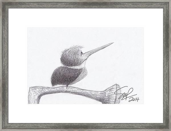 Hummingbird Bulldog Framed Print