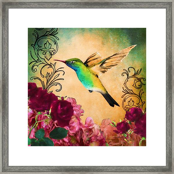 Hummingbird I Framed Print