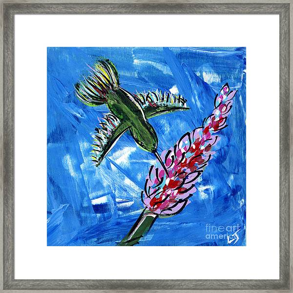 Hummingbird II Framed Print