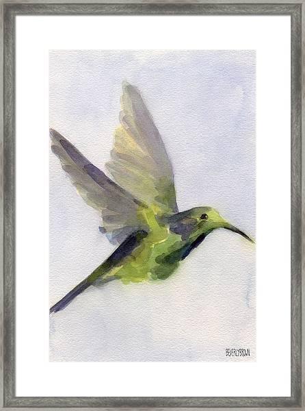 Hummingbird Watercolor Bird Painting Framed Print