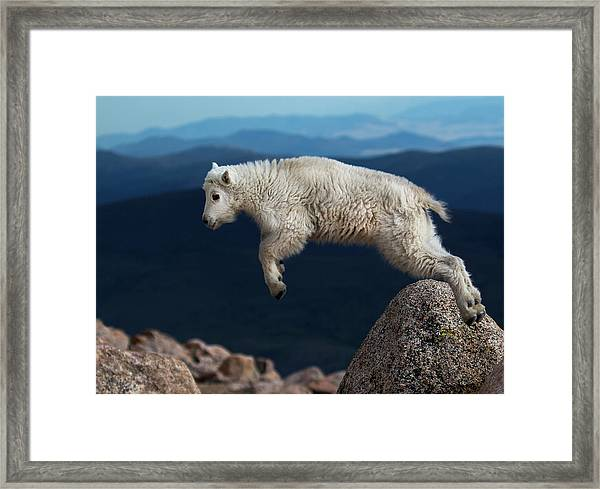 Hump Over Framed Print