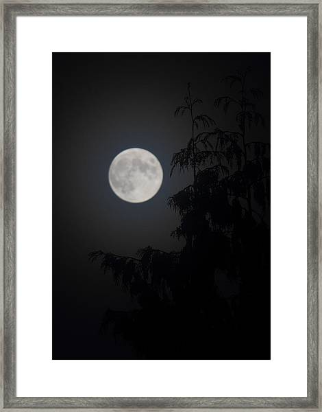 Framed Print featuring the photograph Hunters Moon by Randy Hall
