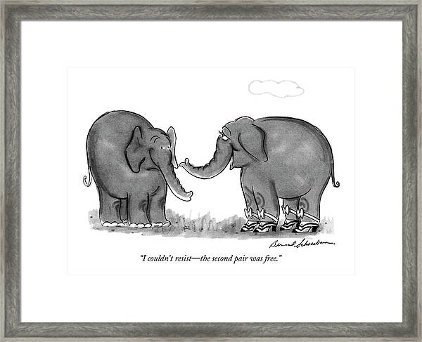 I Couldn't Resist - The Second Pair Was Free Framed Print