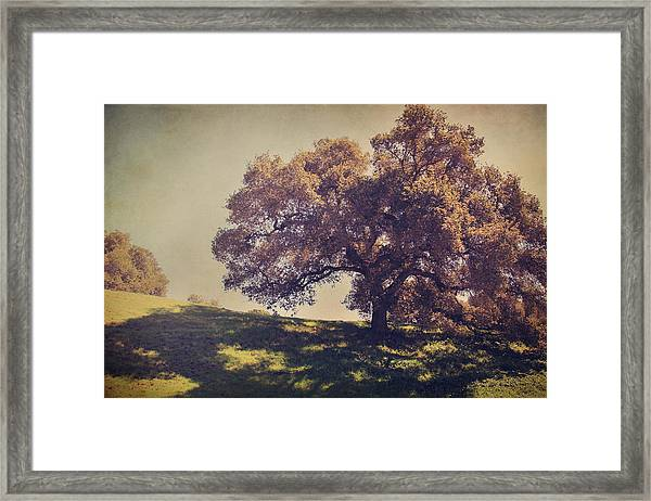 I Wish You Had Meant It Framed Print