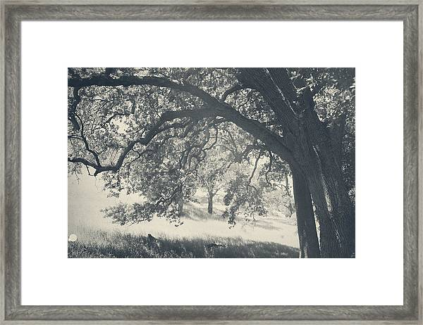 I Would Wrap My Arms Around You Framed Print