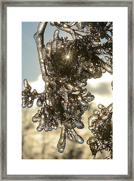 Ice-5178 Framed Print