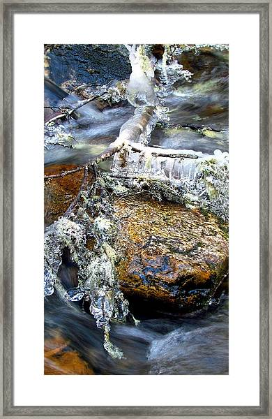 Ice Ornaments Framed Print