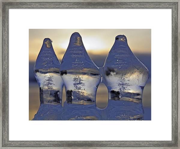 Ice Trio Framed Print