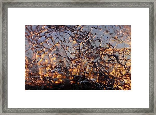 Ice Web Framed Print