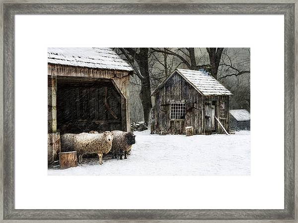 Icing On The Capes Framed Print