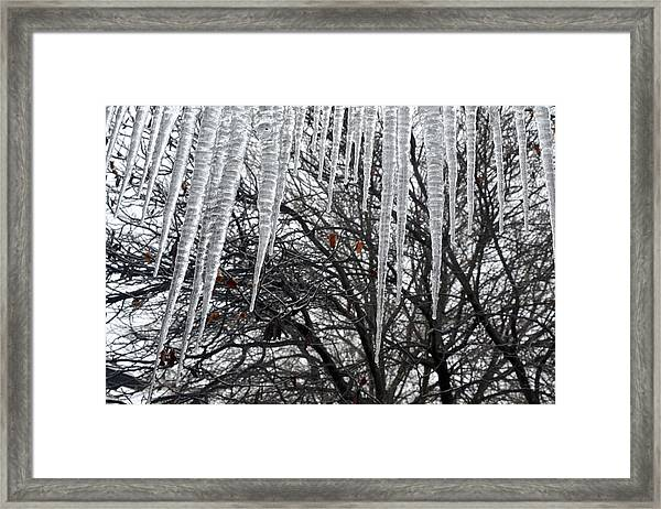 Icycles On The Eave Framed Print