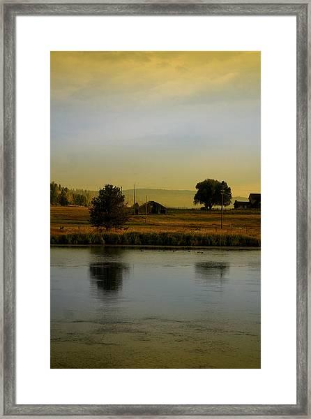 Idaho Tree Reflections  Framed Print by Mary Gaines