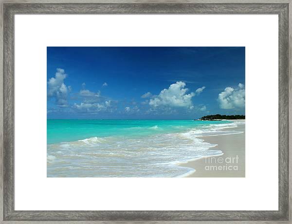 Iguana Island Caribbean Framed Print
