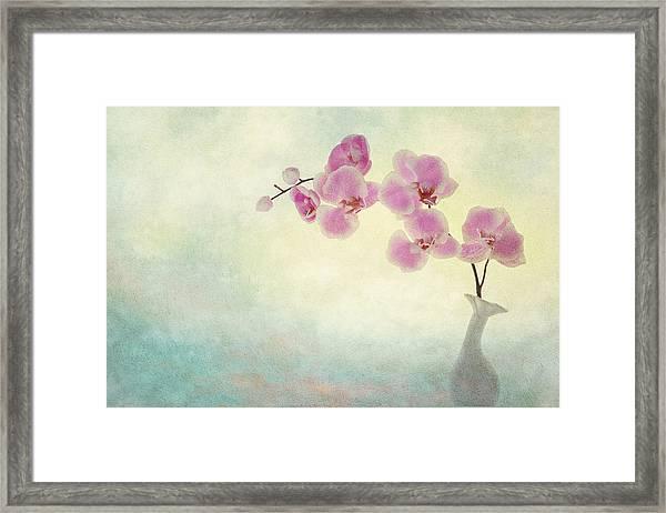 Ikebana Framed Print