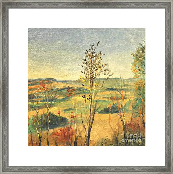 Illinois Country Framed Print