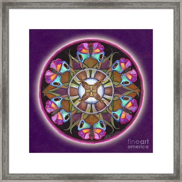 Illusion Of Self Mandala Framed Print