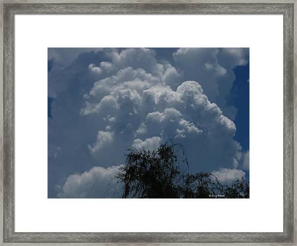 I'm Thinking Rain Framed Print by Greg Patzer