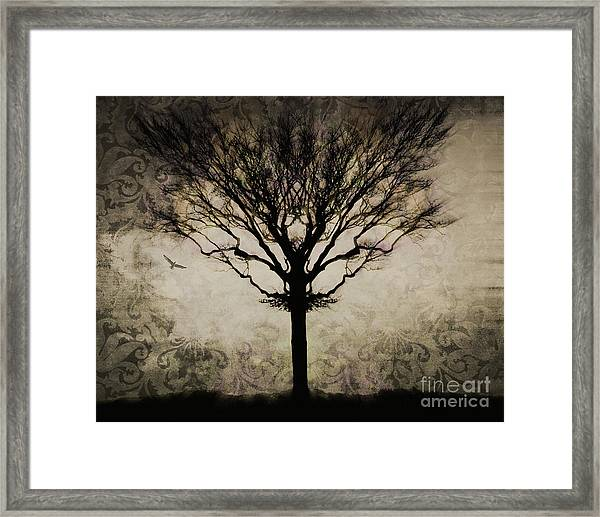 In A Symmetrical World Framed Print