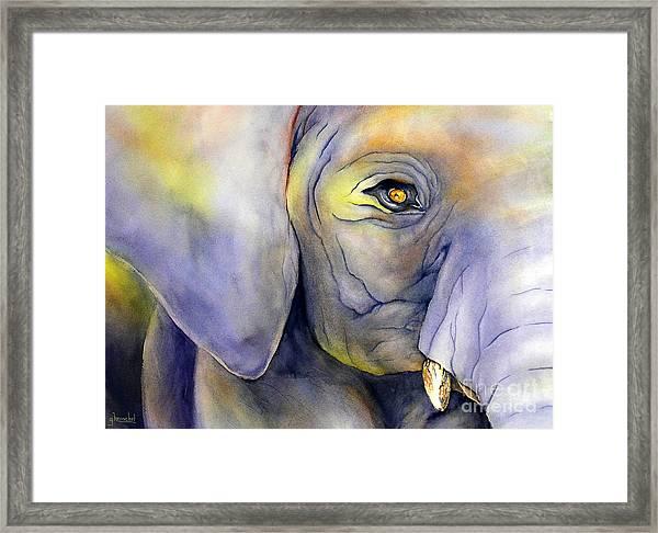 In Captivity Framed Print