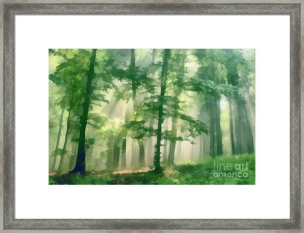 In Forest Framed Print by Odon Czintos