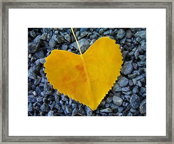 In Love ... Framed Print