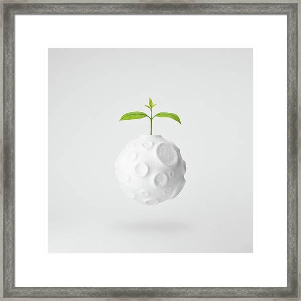 In My World... Framed Print