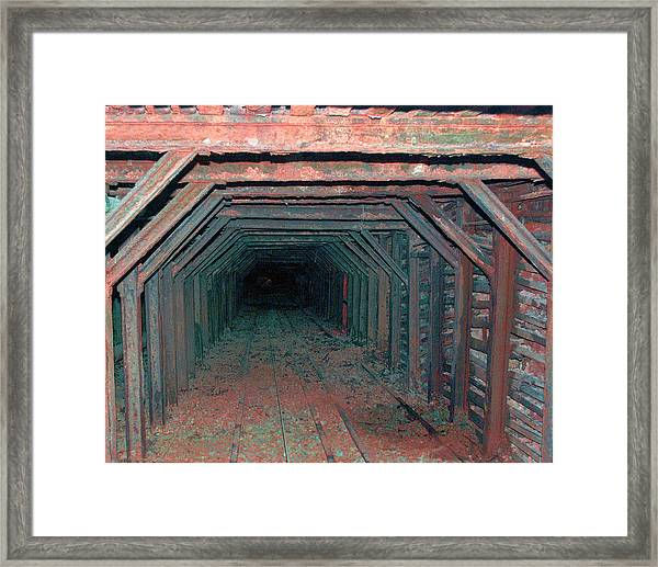 Framed Print featuring the photograph In Search Of Gold by William Havle