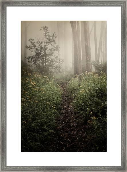 In Silence Framed Print