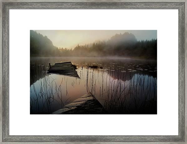 In The Misty Morning Framed Print