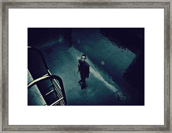 In The Pool Framed Print