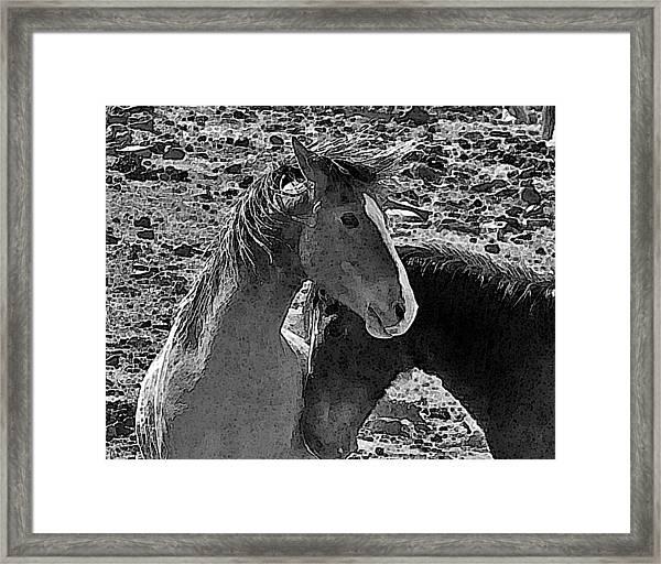 In The Wild Framed Print