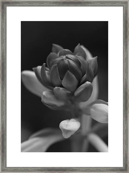 In Time Framed Print