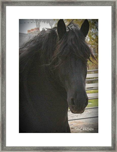 In Your Eyes Framed Print