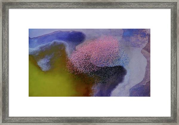 Incredible Colors Framed Print