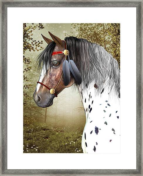 The Indian Pony Framed Print