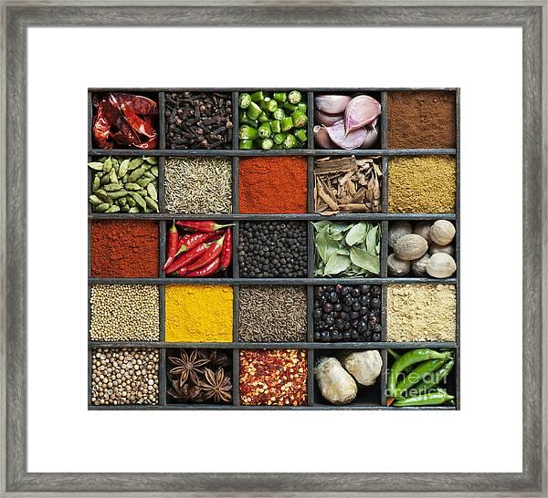 Indian Spice Grid Framed Print