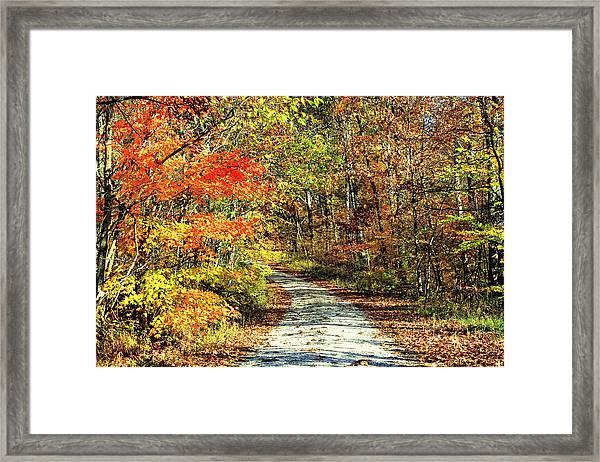 Indiana Back Road Framed Print