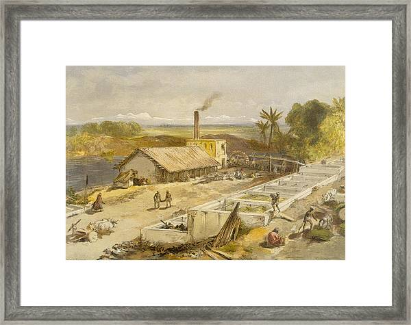 Indigo Factory - Bengal, From India Framed Print