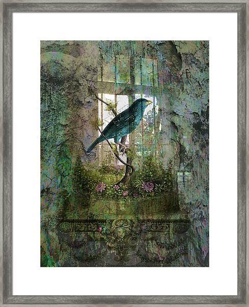 Indoor Garden With Bird Framed Print