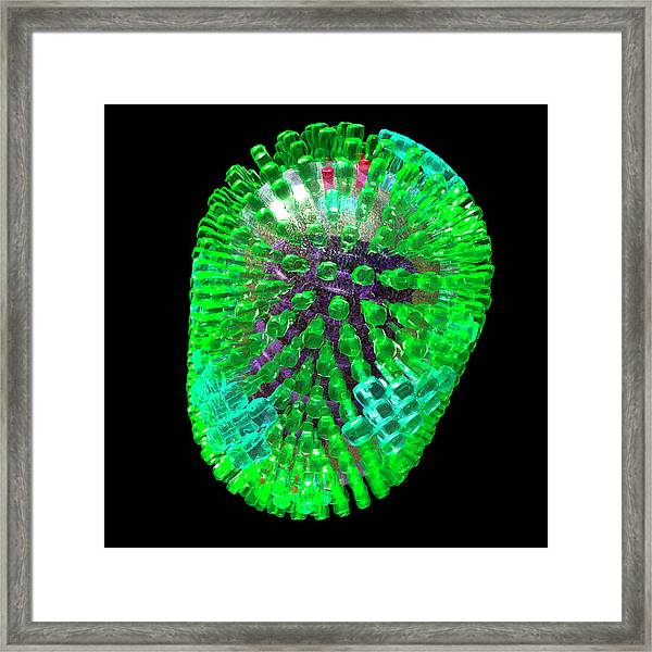 Influenza A Virus Framed Print by Russell Kightley/science Photo Library