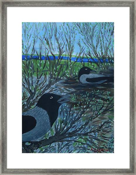 Inis Meain 5 Hooded Crows Framed Print by Roland LaVallee