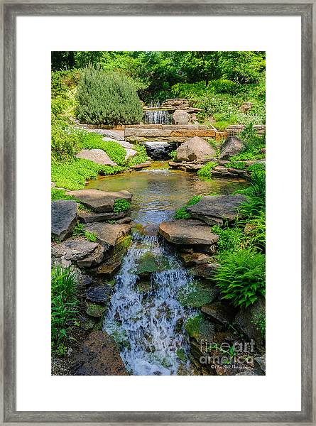 Inniswood Metro Park Photo Framed Print