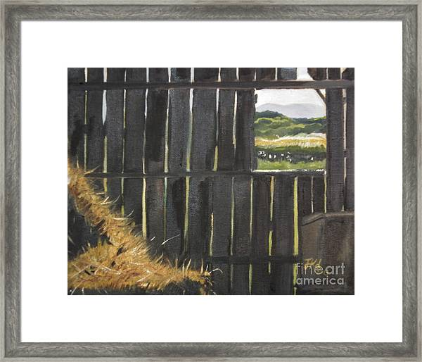 Barn -inside Looking Out - Summer Framed Print