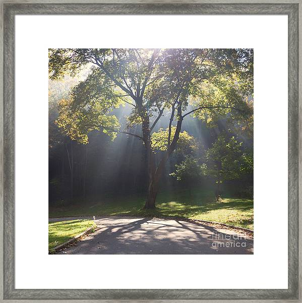 Framed Print featuring the photograph Inspirational Scene Sun Streaming Fog Square by Kari Yearous