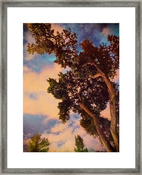 Inspired By Maxfield Parrish Framed Print