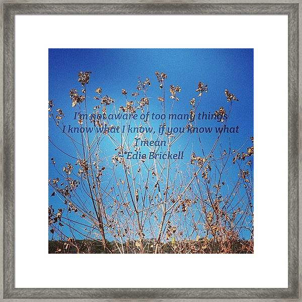 Instaquote#instaquoteapp Framed Print by Gia Marie Houck