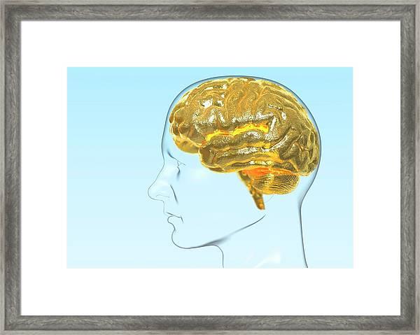 Intelligence Framed Print