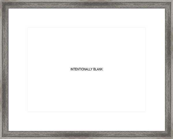 Intentionally Blank Framed Print