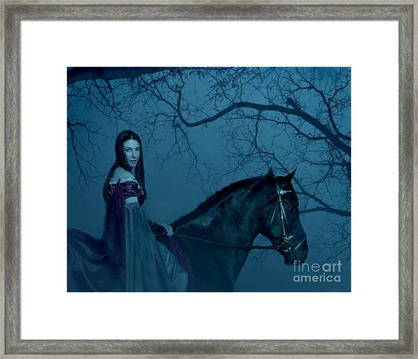 Into The Black Forest Framed Print