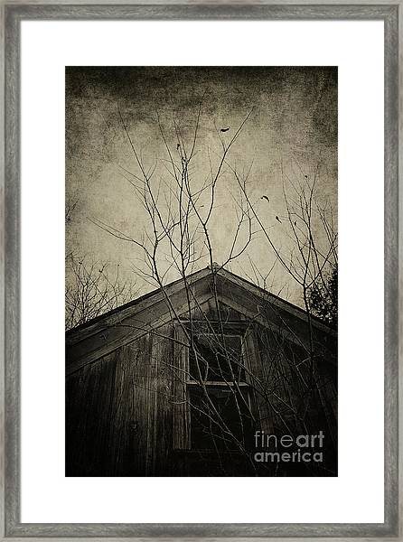 Into The Dark Past Framed Print